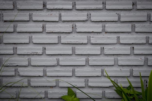 Grijze oude bakstenen muur en gras