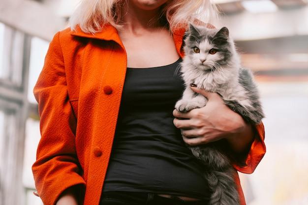 Grijze pluizige kat. lieve kat thuis in de handen van een meisje