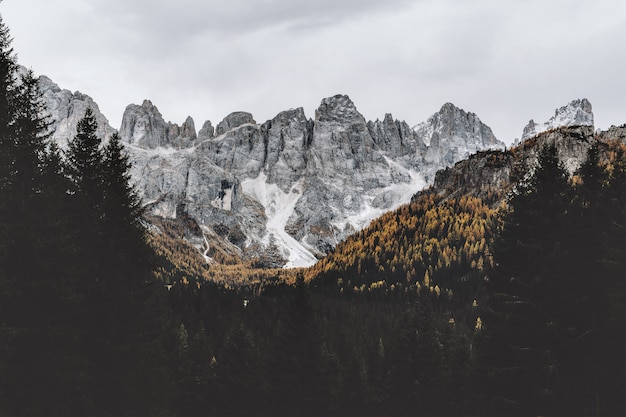 Grijze rotsachtige berg