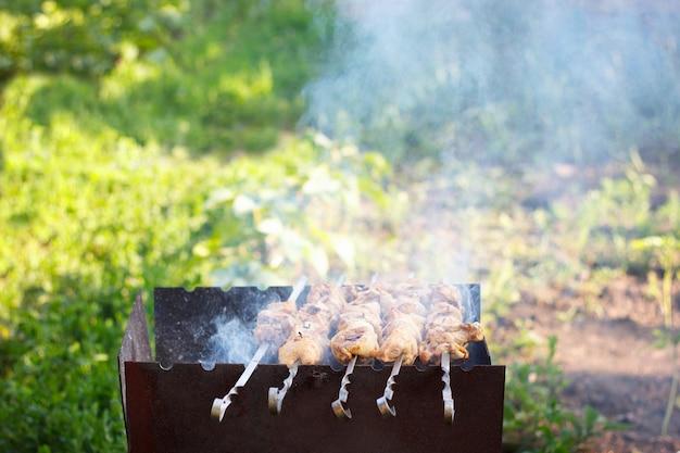 Grill barbecue in de natuur. geassorteerd vlees van kip en varkensvlees en op barbecuegrill gekookt voor het diner van de de zomerfamilie