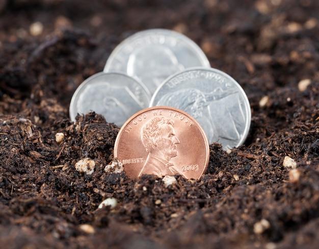 Groeiend uit de aarde amerikaanse munten één, vijf, tien en vijfentwintig - een kwart dollar, de een na de ander, focus op één cent, de rest is onscherp, close-up