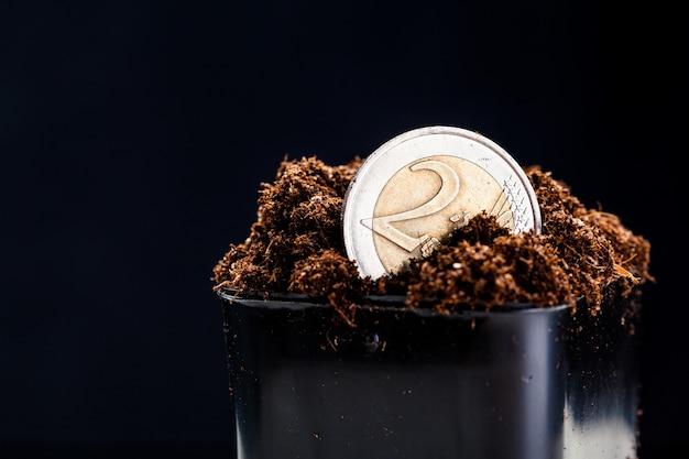 Groeiende euromunten.