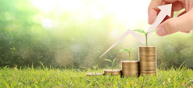 Groeiende munten in de hand. financiën investeringsconcept