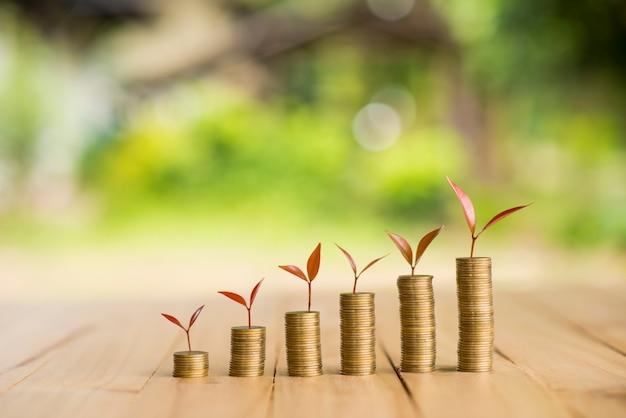 Groeiende plant op rij munten geld, csr in het bedrijfsleven