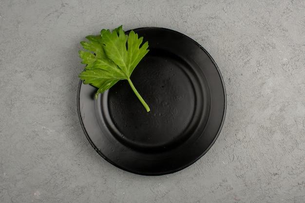 Groen blad binnen zwarte plaat op een lichte vloer