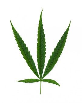 Groen blad cannabis isolaat