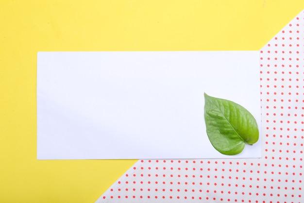 Groen blad en leeg wit papier met een gekleurde achtergrond. leeg witboek voor exemplaarruimte