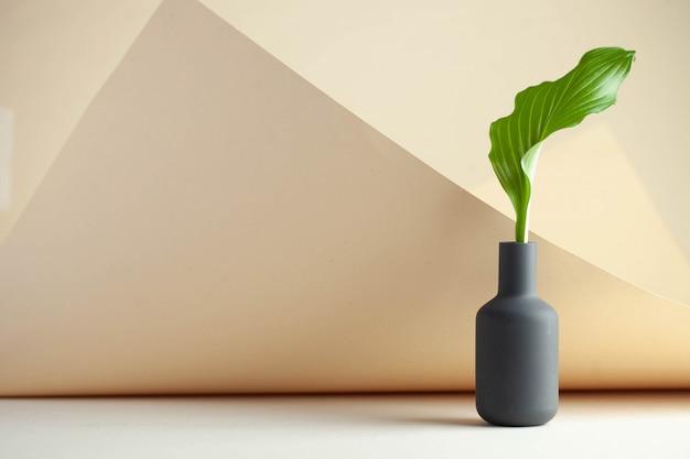 Groen blad in een vaas op een lichte achtergrond met ruimte voor tekst.