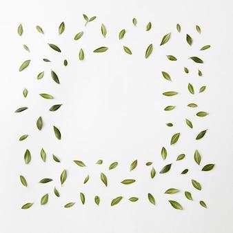 Groen bladerenkader op witte achtergrond voor ruimtetekst. plat leggen.