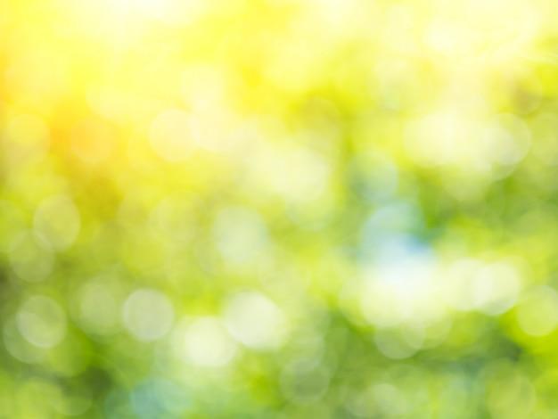 Groen blured abstracte achtergrond