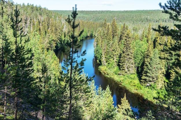 Groen bos en blauwe rivier, finland. oulanka nationaal park