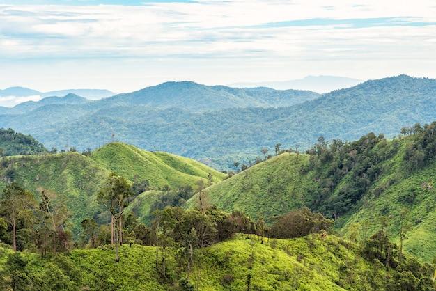 Groen bos op bergketenlandschap met blauwe en bewolkte hemel.