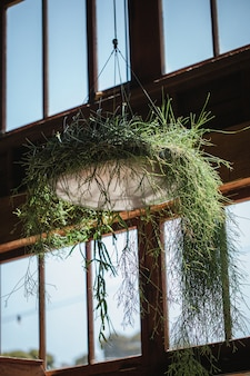 Groen en grijze hangende plantenpot