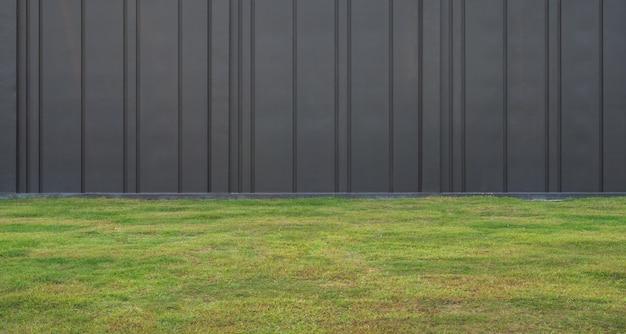 Groen gras en zwarte muurachtergrond