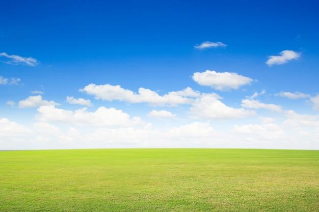 Groen gras met blauwe lucht en witte wolken