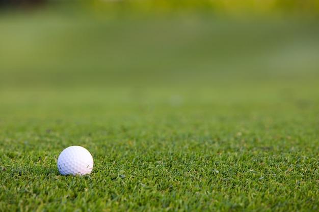 Groen gras met golfbal close-up in soft focus bij zonlicht. sportspeeltuin voor golfclubconcept