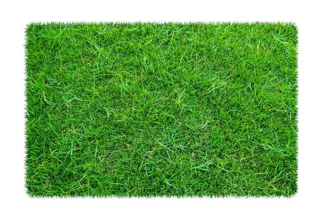 Groen gras. natuurlijke textuurachtergrond. vers de lente groen gras