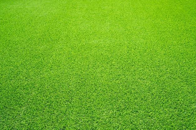 Groen gras textuur achtergrond, bovenaanzicht van grastuin ideaal concept gebruikt voor het maken van groene vloeren