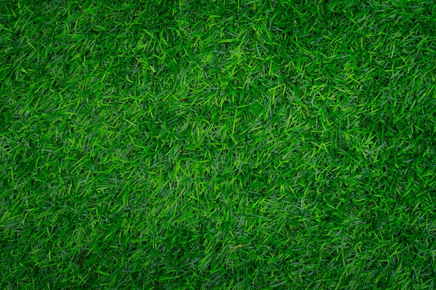 Groen gras textuur.