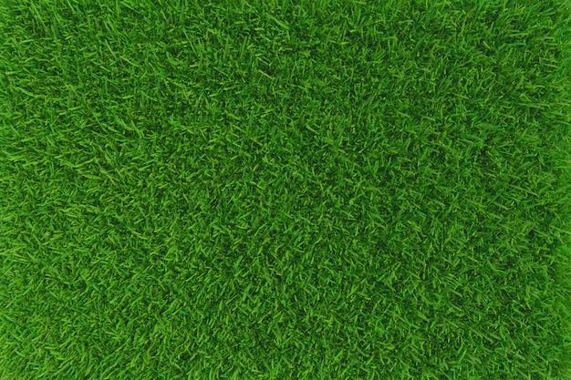Groen gras textuur