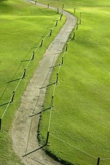 Groen gras veld weide met kronkelende weg