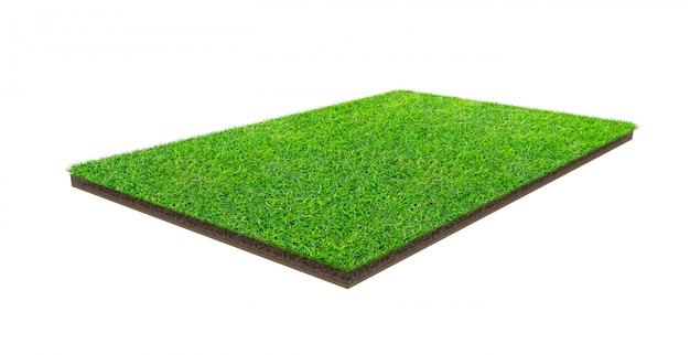 Groen grasgebied dat met het knippen van weg wordt geïsoleerd. sportveld. zomerspelen.