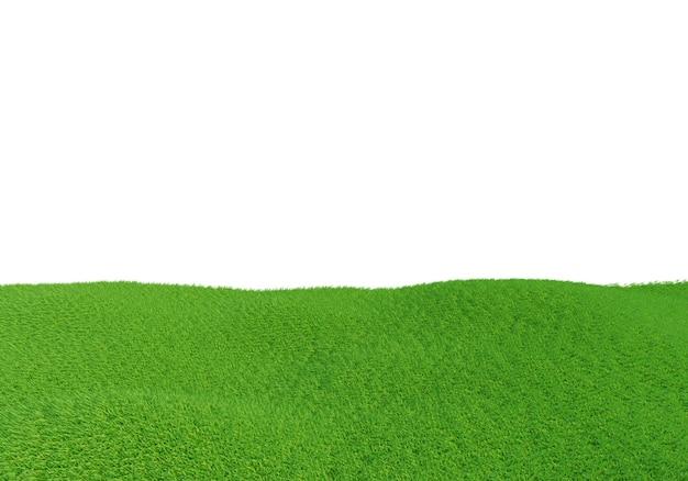 Groen grasveld dat op wit wordt geïsoleerd