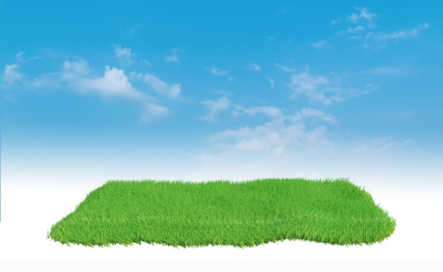 Groen grasveld over blauwe hemel