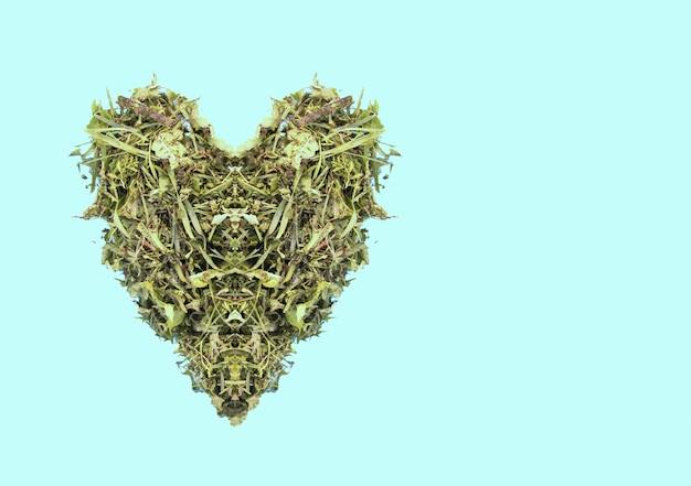 Groen hart gemaakt van vers gras op lichtblauwe pastelachtergrond.