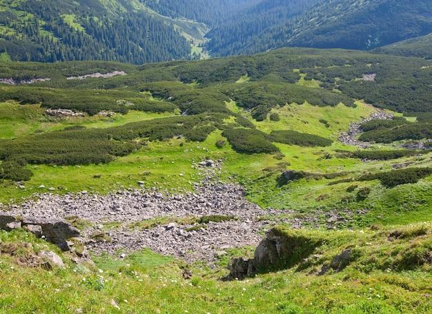 Groen hout van naaldbomen en stenen op zomer berghelling (oekraïne, karpaten)