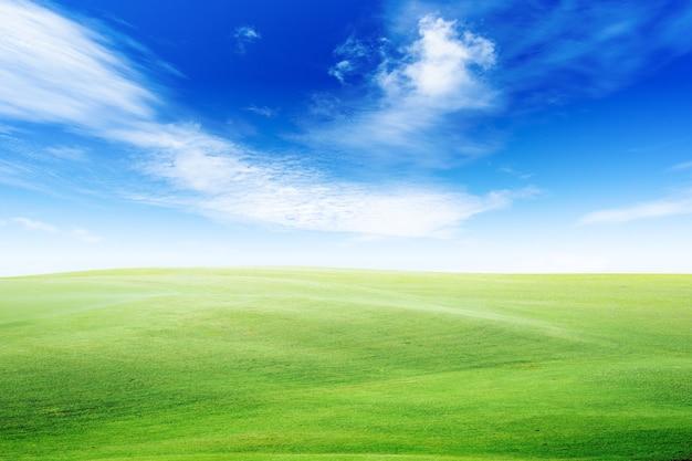 Groen land en blauwe lucht