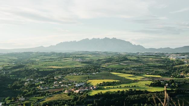 Groen landschap met berg