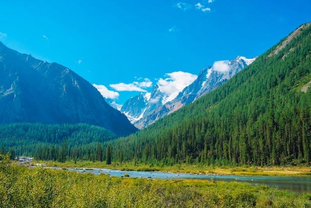 Groen landschap met bergkreek dichtbij bos tegen grote sneeuwbergen