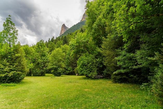 Groen landschap met bomen, gras en donkere wolken in bewolkte zomerdag in ordesa pirineos