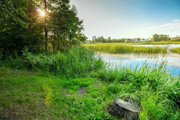 Groen landschap met rivier en zon