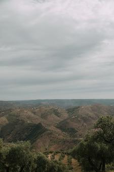 Groen landschap met veel groene bomen en bergen onder de onweerswolken