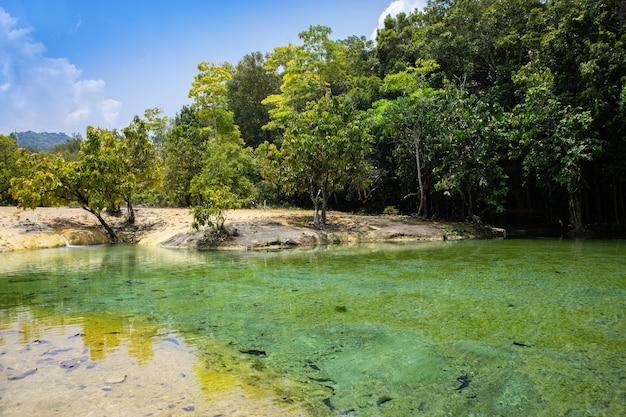 Groen meer in krabi, thailand. verbazingwekkende mijlpaal in zuidoost-azië.