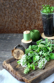 Groen mint hout