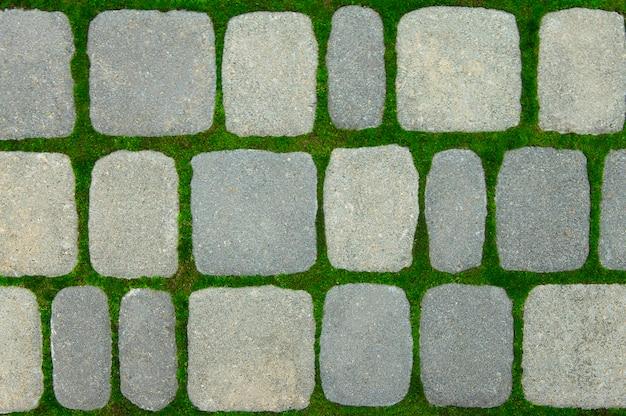 Groen mos groeit tussen bakstenen op weg