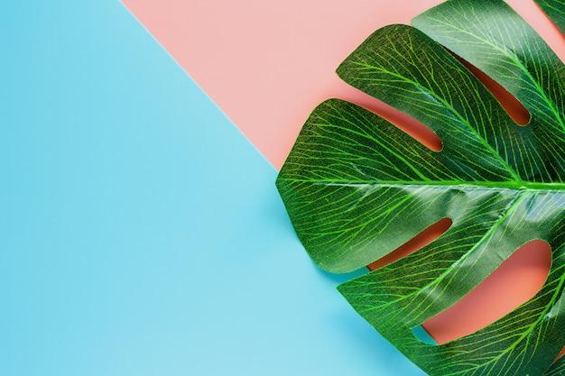 Groen palmblad op roze en blauwe kleurenachtergrond