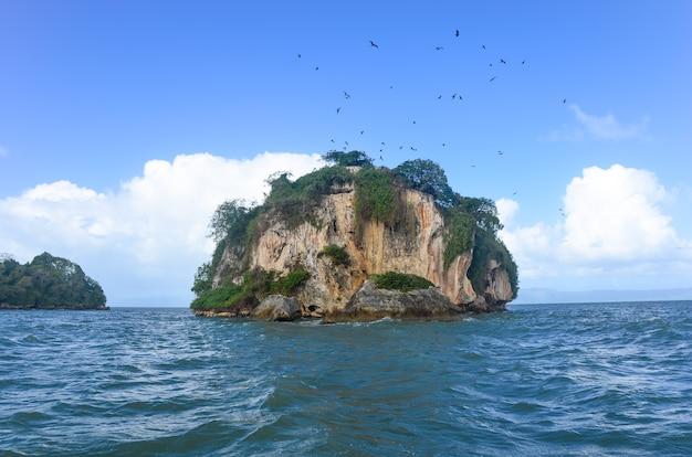Groen rotsachtig eiland omgeven door zee.