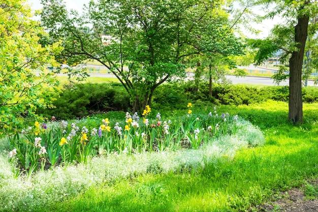 Groen stadspark met groene bomen, bloembed, gras en stralende zon