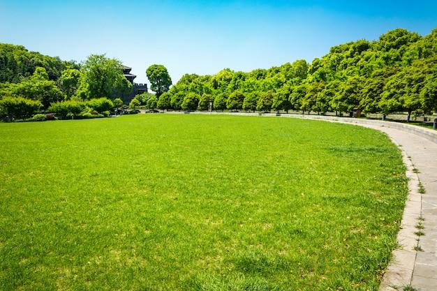 Groen stadspark