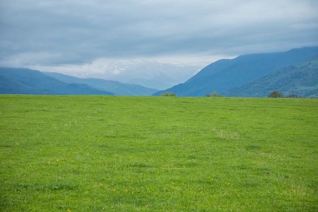 Groen veld en klif onder de wolken