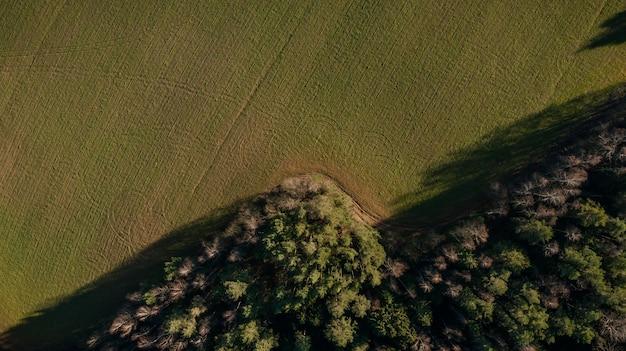 Groen veld met bomen bovenaanzicht