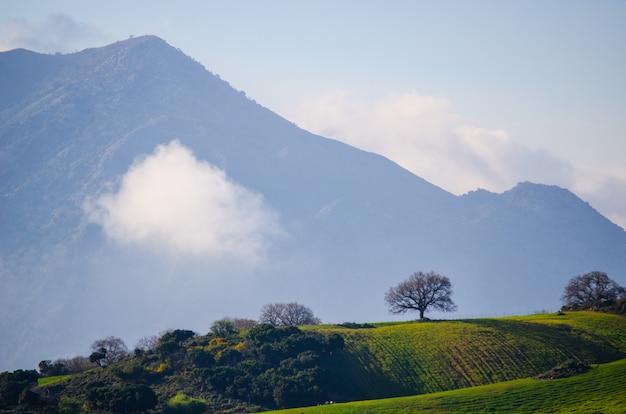 Groen veld omgeven door een bergachtig landschap onder de rokerige hemel