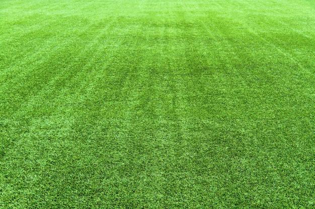 Groen voetbalveld
