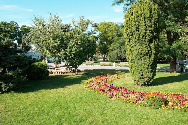 Groen zonnig park met bloemen en bomen