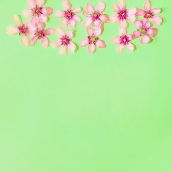 Groene achtergrond met bloemen met copyspace