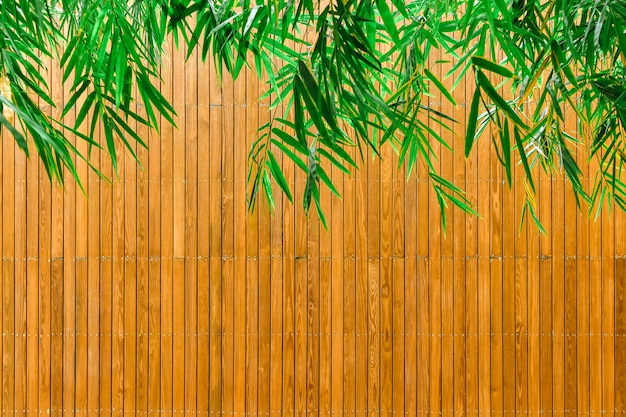 Groene bamboebladeren en houten platen